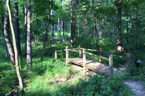 A bridge along the Whispering Pines Nature Trail at Tyler State Park, just outside of Tyler.