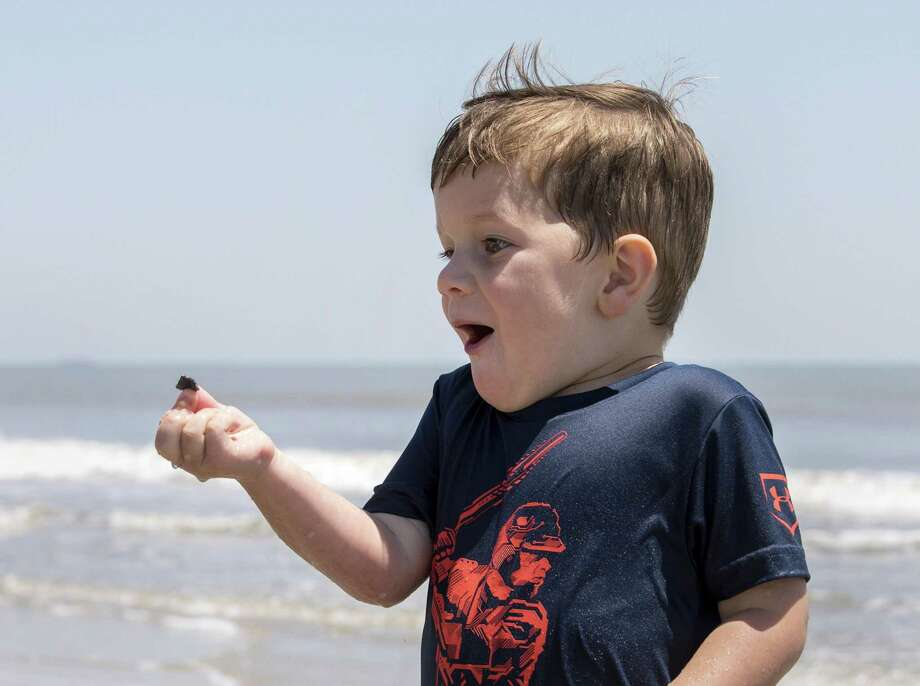 Collin Doggett, 4, who traveled from Decatur, Texas with his family to spend time at the beach, finds a seashell he likes as he plays in the surf for the first time. Photo: Jon Shapley /Houston Chronicle / © 2018 Houston Chronicle