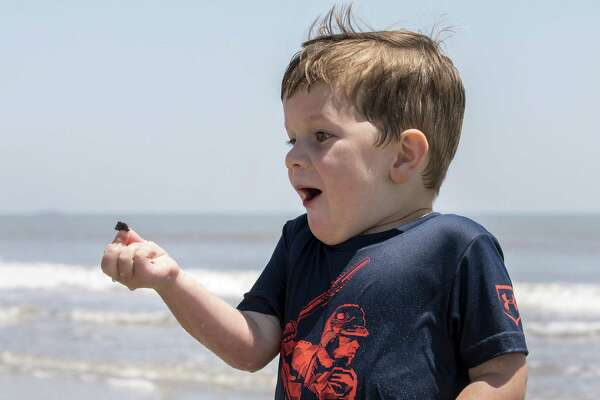 Collin Doggett, 4, who traveled from Decatur, Texas with his family to spend time at the beach, finds a seashell he likes as he plays in the surf for the first time.