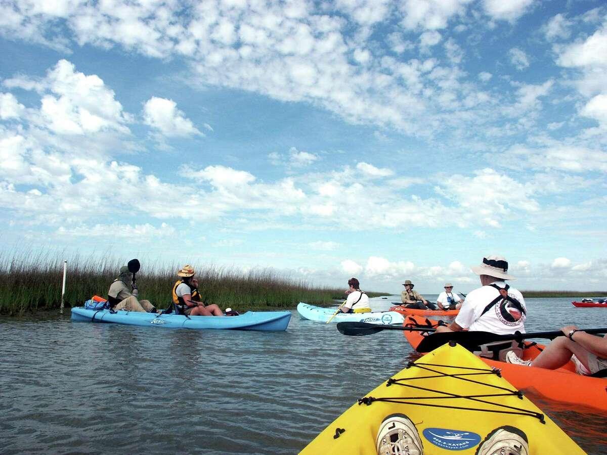Birding, Nature & Outdoors: Artist Boat Kayak Tour