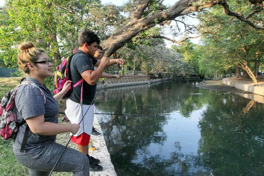 Lupita Marquez (from left), Fernando Lopez and Joe Martinez fish along the banks of the San Antonio River at the egret and heron rookery in Brackenridge Park. Photo: Marvin Pfeiffer /San Antonio Express-News