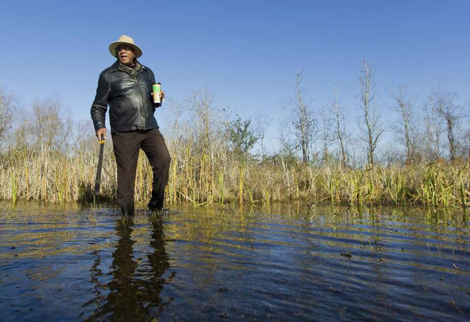 Elikah Easley, chairman of the Tamina Cemetery Project Community Development Corporation, walks through the flooded Sweetrest Cemetery, Saturday, Jan. 13, 2018, in the historic Tamina community. The 12-acer cemetery is the resting place for approximately 261 members of the founding Montgomery County community founded by freed slaves near The Woodlands. Photo: Jason Fochtman, Staff Photographer / Houston Chronicle / © 2018 Houston Chronicle