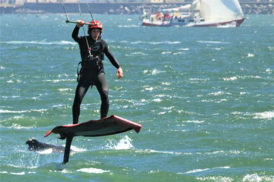A kite surfer was photographed barely dodging a humpback whale just west of the Golden Gate Bridge. Photo: Jennifer Hendershot/San Francisco Whale Tours