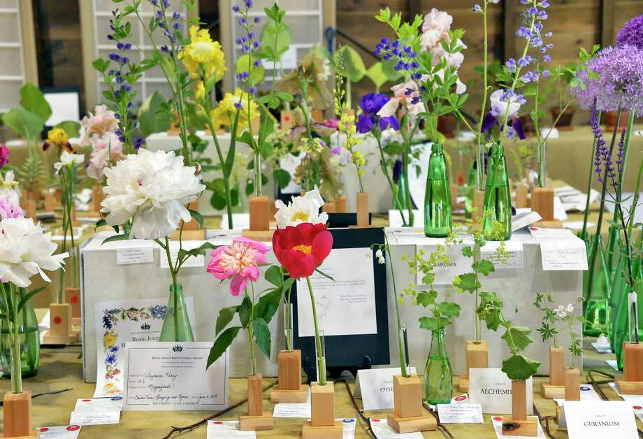 Flowers on display at the Flower Show at the Pruyn House presented by Fort Orange Garden Club Thursday June 7, 2018 in Colonie, NY.  (John Carl D'Annibale/Times Union) Photo: John Carl D'Annibale / 20043836A
