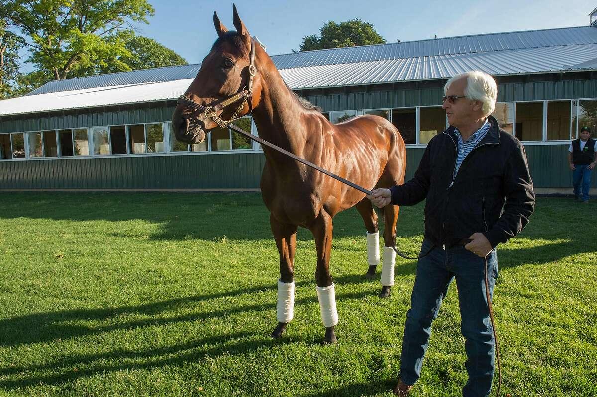 2015 Belmont Stakes and Triple Crown winner American Pharoah with trainer Bob Baffert on Sunday, June 7, 2015, at Belmont Park in Elmont, N.Y. (Bryan Smith/Zuma Press/TNS)