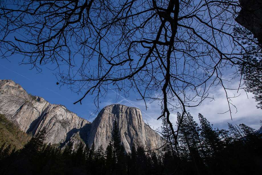 "The view of El Capitan from the Yosemite Valley floor on February 26, 2016, in Yosemite, CA.The new concessionaire for Yosemite National Park is Aramark which won a bid for the 15 year contact over current contractor Delaware North. Delaware North is claiming intellectual property rights which it purchased in 1993 for the names of several hotels, Curry Village, Badger Pass Ski Area area and the name, ""Yosemite National Parks."" Signage will have to be changed or covered when Aramark takes over. The National Park Service and Aramark  have decided to rename the contested properties rather than pay the requested $50 million by Delaware North. Photo: Tomas Ovalle / Special To The Chronicle"