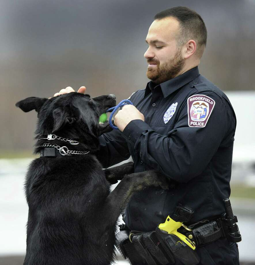Brookfield Police Officer Joseph Kyek, a canine handler, works with Major, Tuesday, April 3, 2018. Photo: Carol Kaliff / Hearst Connecticut Media / The News-Times