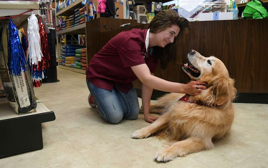 "Meagan Tanner, 21, left, an employee at Pet Ranch in Kingwood, gives some special attention to ""Sadie"", 9 1/2, a regular customer to the store with her owner Sandy Faubion, of Kingwood, during the store's 40th Anniversary Celebration on May 26, 2018. (Jerry Baker/For the Chronicle) Photo: Jerry Baker, Freelance / For The Chronicle / Freelance"
