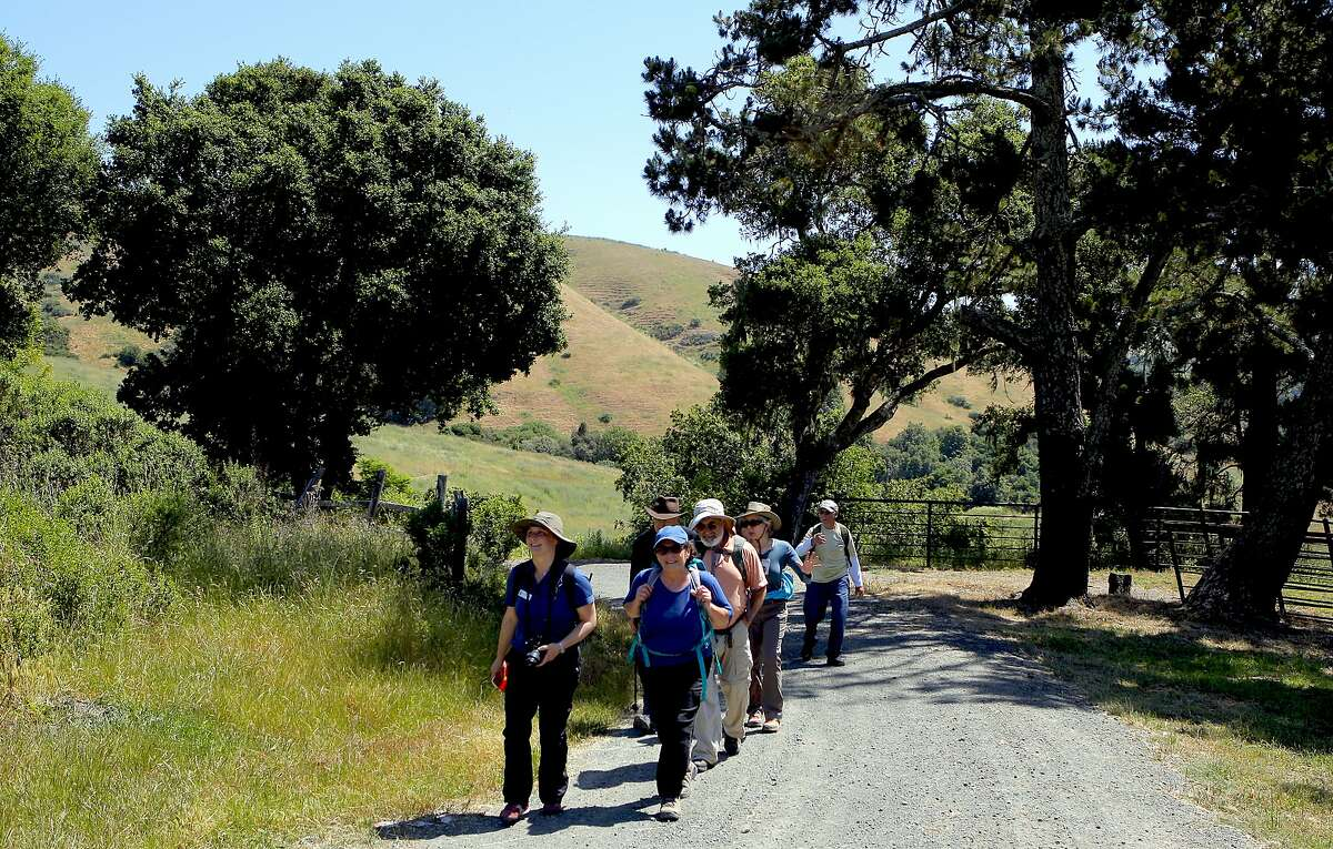 Part of a group on Chronicle-subscribers' hike heading in to La Honda Creek Open Space Preserve