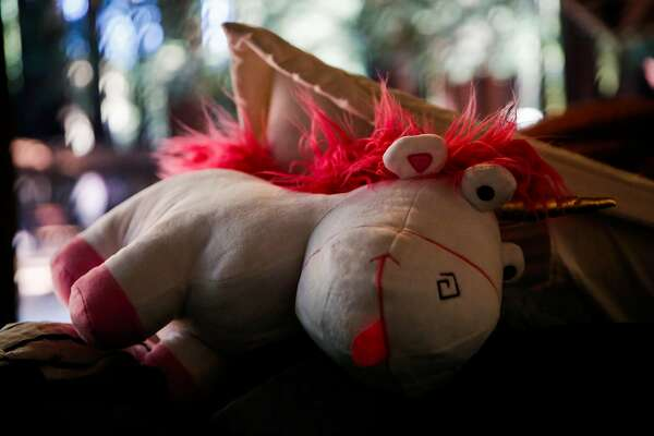 A stuffed animal rests on a students suit case at Camp Everytown.