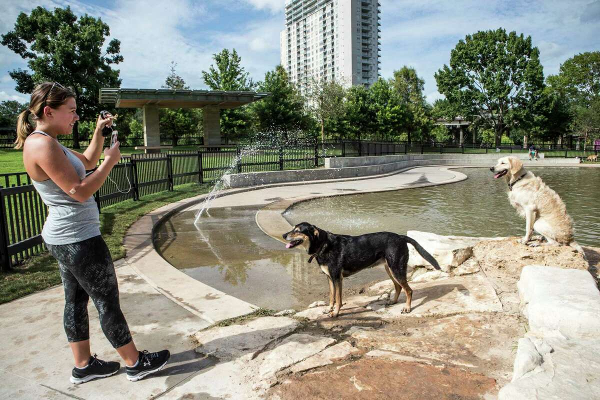 Ashley LaRock takes a photo of her dogs, Sophey, center, and Olley, as they play at Johnny Steele Dog Park on Monday, June 11, 2018, in Houston. The park, which was heavily damaged by Hurricane Harvey, reopened for the first time since the storm.