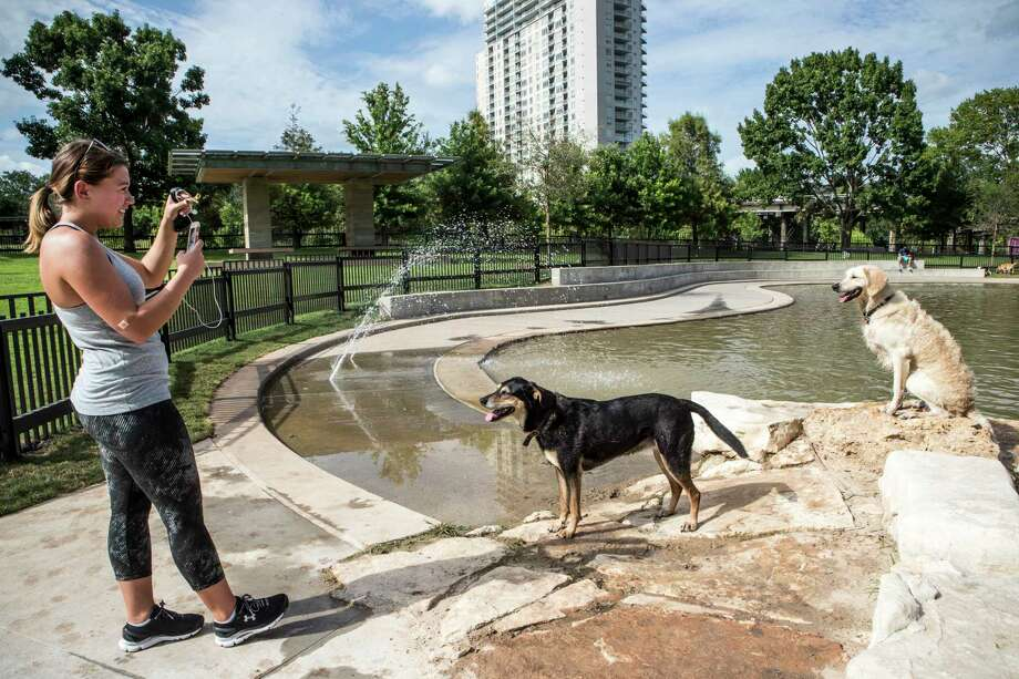 Ashley LaRock takes a photo of her dogs, Sophey, center, and Olley, as they play at Johnny Steele Dog Park on Monday, June 11, 2018, in Houston. The park, which was heavily damaged by Hurricane Harvey, reopened for the first time since the storm. Photo: Brett Coomer, Houston Chronicle / © 2018 Houston Chronicle