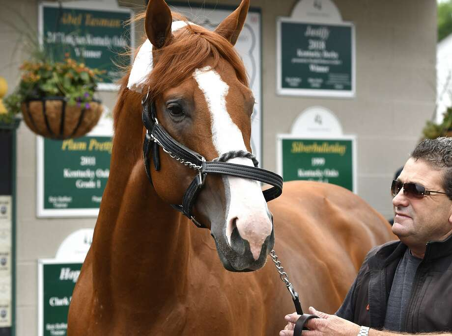 Triple Crown winner Justify, is led around in front of his barn by assistant trainer Jimmy Barnes following his arrival at Churchill Downs, Monday, June 11, 2018, in Louisville, Ky. (AP Photo/Timothy D. Easley) Photo: Timothy D. Easley / Associated Press
