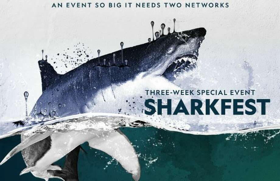 Nat Geo Wild Just Made 'SharkFest' Twice as Long as Discovery's 'Shark Week' (Exclusive ...