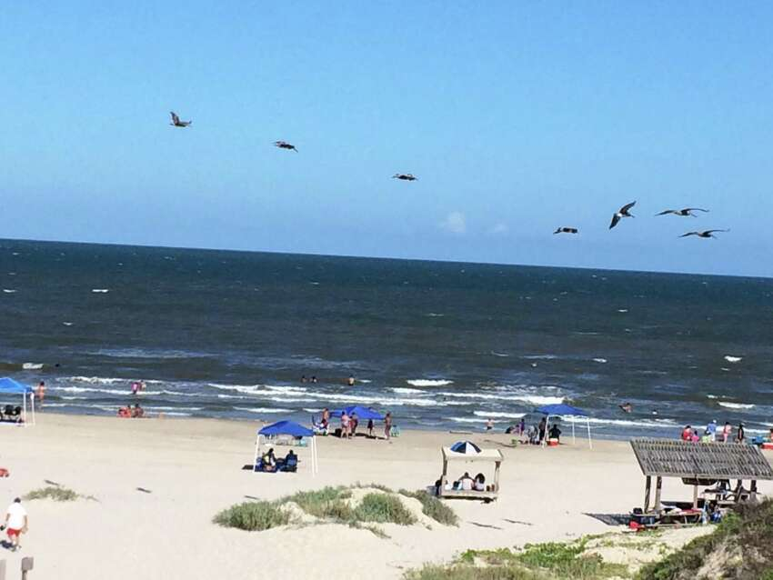 The Padre Island National Seashore: The beach is open for day use from 8 a.m. to 8 p.m. and hotels in the area are taking reservations. Overnight camping and parking are not allowed at this time.