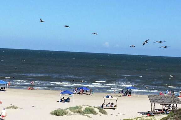The Padre Island National Seashore is just a short drive from Corpus Christi and has been a destination for the Come Into The Outside organization.