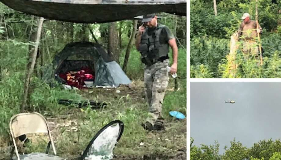 TheNavarro County Sheriff's Office recently discovered a major growing operation roughly 70 miles south of Dallas.  Photo: Navarro County Sheriff's Office