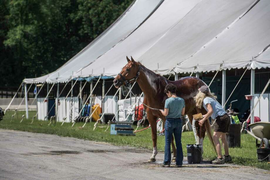Quantum Leap get a cooling bath in the barn area after schooling at the new site of the Skidmore College Saratoga Classic Horse Show at the White Hollow Farm  Tuesday June 12, 2018, in Stillwater, N.Y.  Quantum Leap is owned by Kathleen Mitchell and trained by Michele Perla from W. Boyleston, Mass.   (Skip Dickstein/Times Union) Photo: SKIP DICKSTEIN / 20043883A