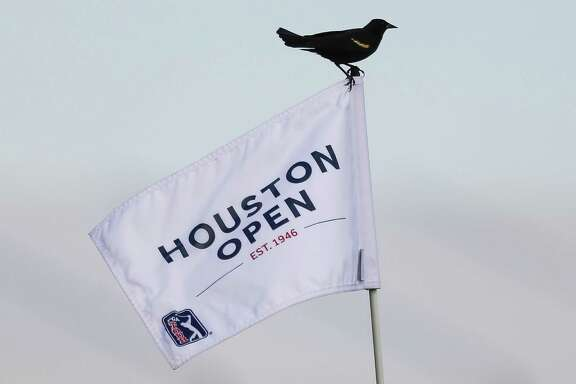 A red wing blackbird sits on the flag of the 18th hole during the Championship Round of the Houston Open Sunday, April 1, 2018 in Humble. (Michael Ciaglo / Houston Chronicle)