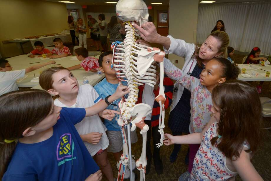 Thirty-five second graders from Wolfpit Elementary School including Reagan Altieri, Audra Lacomis, TJ Echedarria, Camille Miller and Morgan Bleakley learn about the skeletal structure of the human body from Dr. Alicia Briggs, Department Chair of Pediatrics, as the students visit Norwalk Hopsital  Wednesday, June 13, 2018,  to donate over $13,000 they raised to the NICU at the Hospital in Norwalk, Conn. The students raised the money, as they have for the past 14 years, by writing persuasive letters to perspective donors. This will bring their total donation to the NICU to over $30,000. This is in addition to the over $50,000 that second graders have raised for the Wittingham Cancer Center over the years. Photo: Erik Trautmann / Hearst Connecticut Media / Norwalk Hour