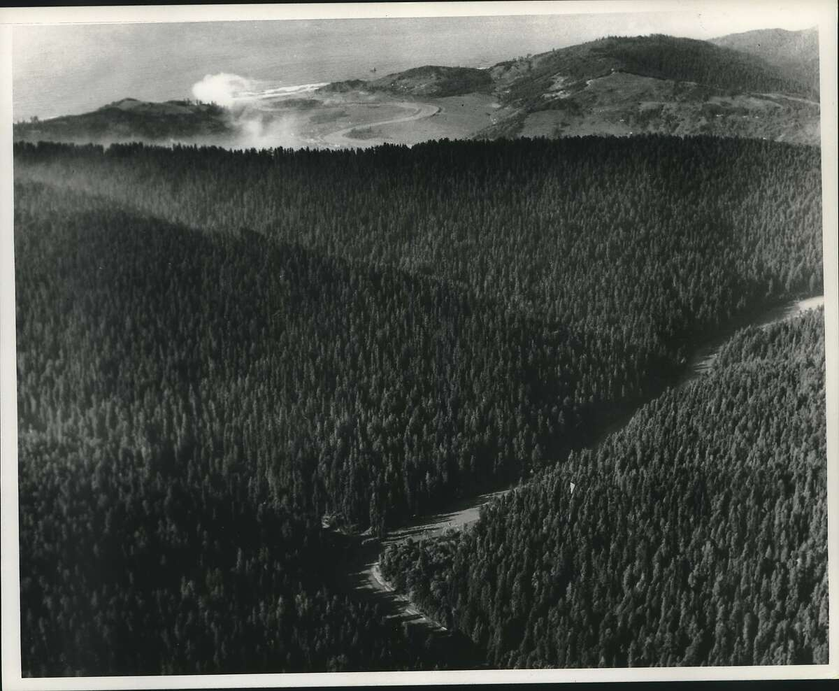 This aerial view taken by a Sierra Club official shows Redwood Creek, at the southern end of Redwood National Park on California's North Coast, which is visible in the background. The park's boundary extends only a quarter mile to either side of the creek and, as logging and new logging roads push nearer, the Sierra Club is mounting a major new redwoods offensive to add more trees and watershed land to the park for wider protection.