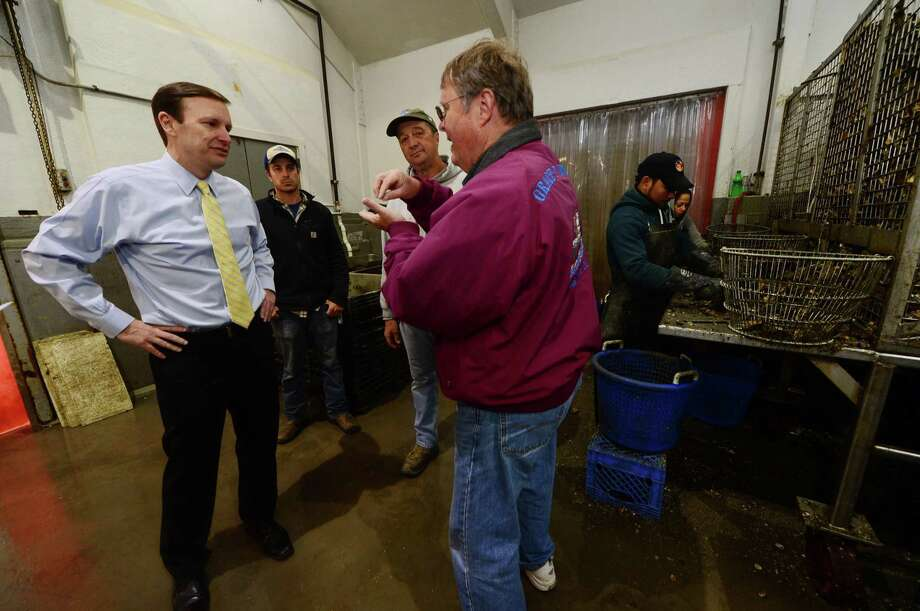 Don Bell, Evironmental Health Director for Norwalk Blooom and Sons, and owners Norm and Jimmy Bloom chat with U.S. Senator Chris Murphy (D-Conn.)at  the company's Norwalk location in 2016. Murphy co-signed letter asking for inclusion in the Farm Bill now before Congress of wider insurance options for shellfish farmers. Photo: Erik Trautmann / Hearst Connecticut Media / (C)2016, The Connecicut Post, all rights reserved