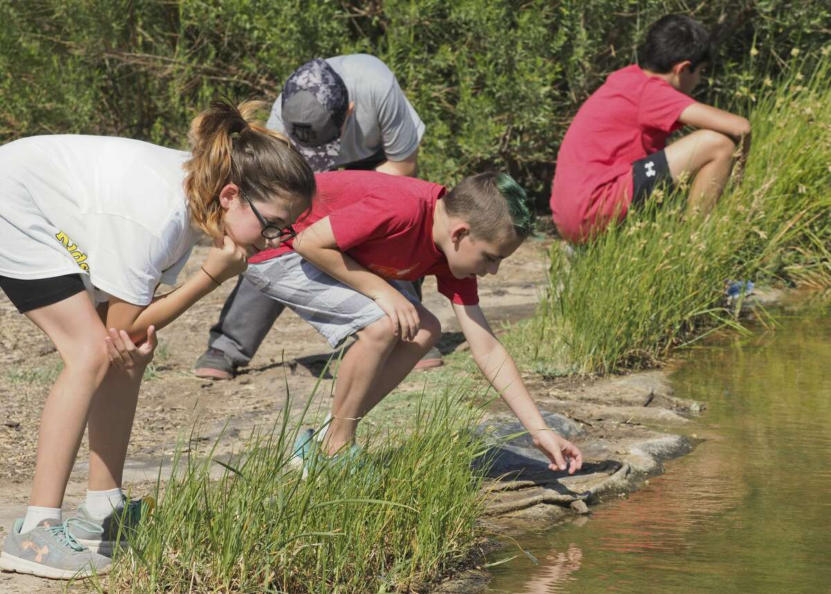 Students look for and try to catch dragon flies and damsel flies 06/14/18 during Arthropod Adventure Camp at Sibley Nature Center. Tim Fischer/Reporter-Telegram