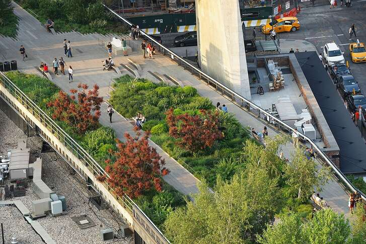 "A view of the Washington Grasslands garden on the High Line, showing �Grace� smokebush in summer and the street below. From ""Gardens of the High Line, Elevating the Nature of Modern Landscapes"" by Piet Ouldof and Rick Darke"