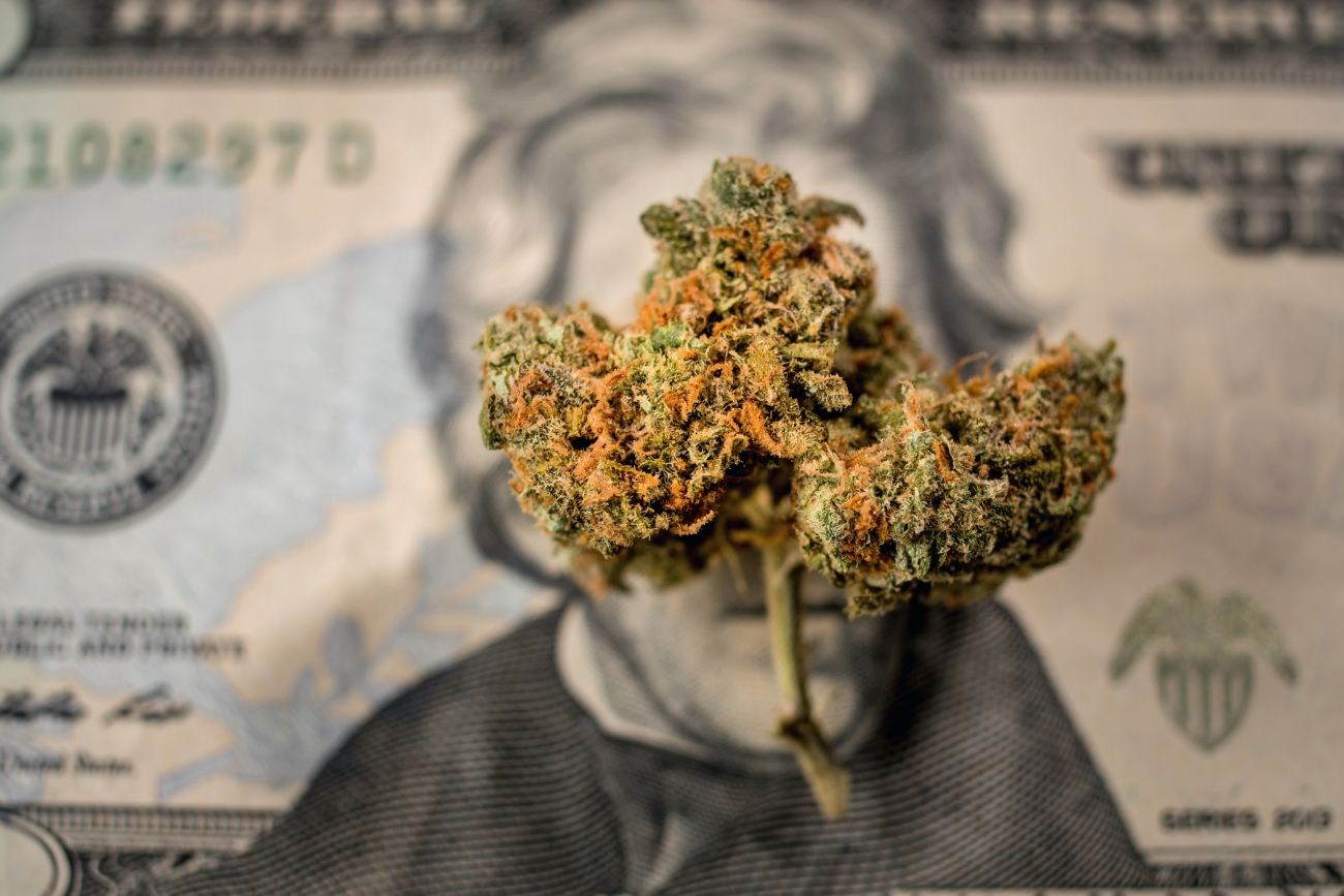 6 Lessons From Cannabis Ceos Who Raised More Than 50