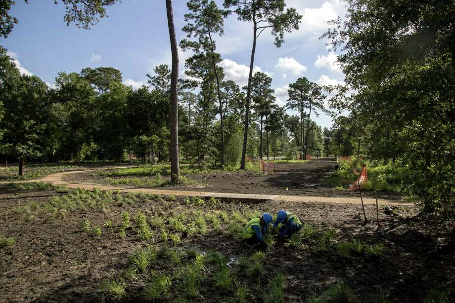 Jerry Cruz, left, and Abel Amezquita work in the restored savannah ecosystem, an example of a more open and sustainable habitat at the Houston Arboretum and Nature Center. Photo: Jon Shapley, Houston Chronicle / Houston Chronicle / © 2018 Houston Chronicle