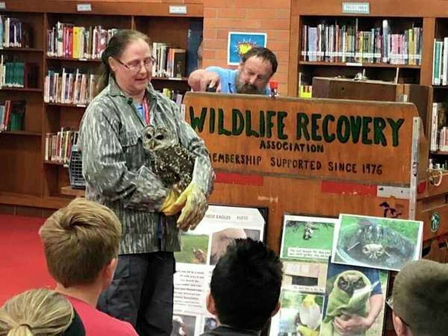 A Barred Owl named Boo teaches students how camouflage works. (photo provided)