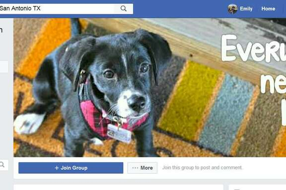 The Facebook page for Lost/Found Pets in San Antonio TX.