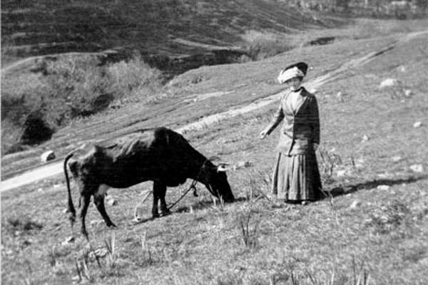 Then: Elise Beneke Tietz with a Good Bros. dairy cow in Glen Canyon, ca 1908. Islais Creek is in the background.