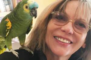 """Artist Dixie Friend, whose """"Books of a Feather"""" mosaic sculptures have been named among the most compelling public artworks in America, poses with a pet."""