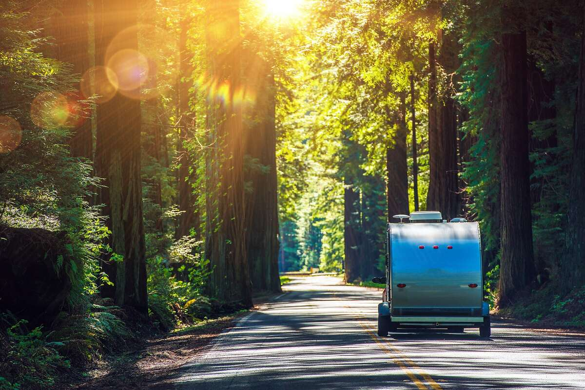 An iconic drive for RVs large and small is California's Avenue of the Giants, a 31-mile portion of old Highway 101 surrounded by 51,222 acres of redwood groves in Humboldt Redwoods State Park.