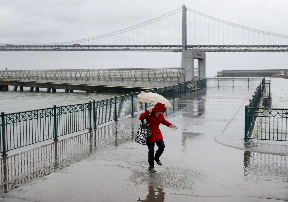 Sylvie Lee walks through a puddle created by king tides after picking up plastic bottles floating in the bay at Pier 14 along the Embarcadero in San Francisco, Calif. on Tuesday, Nov. 24, 2015. King tide conditions are causing higher than usual water levels.