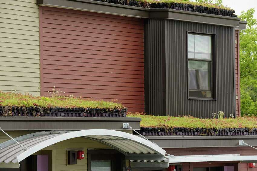 Green roofs are seen on apartments during a ground breaking and ribbon cutting event at the Ida Yarbrough Homes on Wednesday, June 20, 2018, in Albany, N.Y. (Paul Buckowski/Times Union)