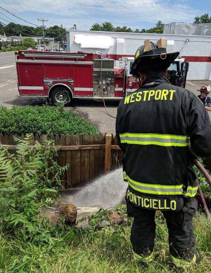Westport, Conn., firefighters extinguished a brush fire on June 20, 2018. Photo: Contributed Photo / Westport Fire Department