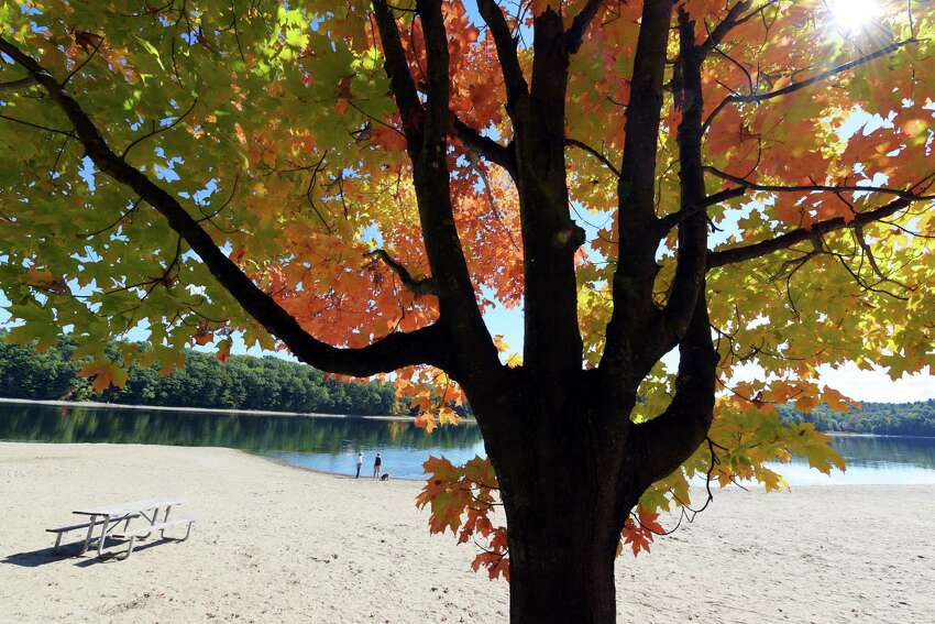 A view of fall foliage at Moreau Lake State Park on Wednesday, Oct. 5, 2016, in Gansevoort, N.Y. The state Office of Parks, Recreation and Historic Preservation is distributing educational pamphlets about swimmer?s itch at Moreau Lake beach after two families reported skin irritations following a visit to the beach. (Paul Buckowski / Times Union archive)