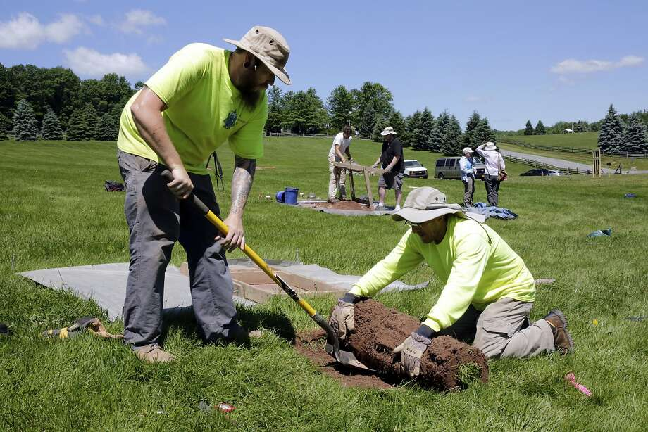 Jesse Pagels (left) and Edgar Alarcon roll back grass at the site of the Woodstock music festival in 1969 as part of an archaeology project conducted by Binghamton University in New York. Photo: Richard Drew / Associated Press