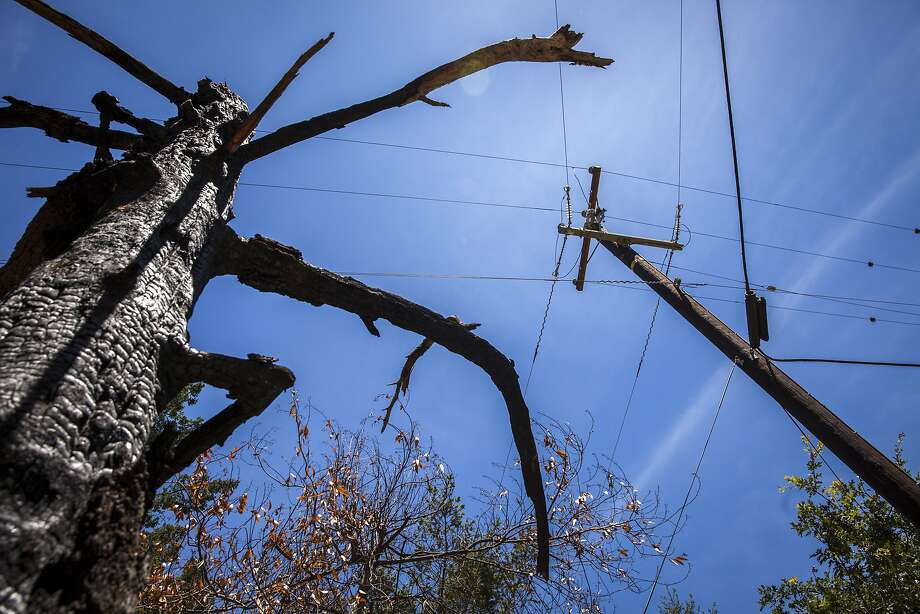 In this file photo, a burned out tree stands near one of many replaced PG&E power poles along Mount Veeder Road on June 9, 2018 in Napa, Calif. Red flag warnings issued Sunday evening in response to heightened wildfire risks led Pacific Gas & Electric Co. to shut off power to tens of thousands of Northern Californians. Photo: Peter DaSilva / Peter DaSilva