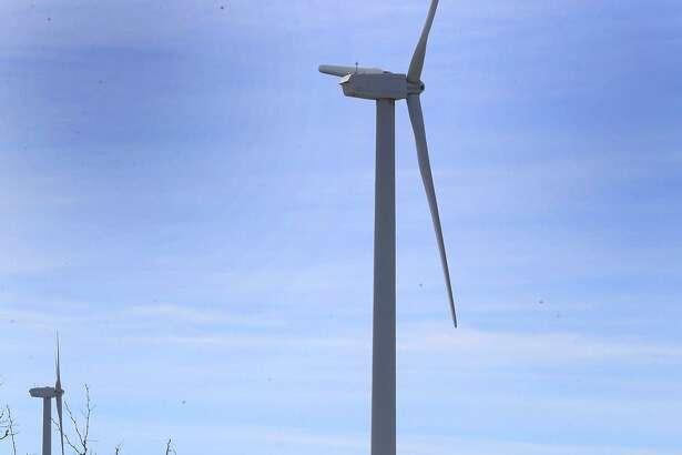 Cattle roam on a mesa near Iraan, Texas on the site of the Desert Sky Wind Farm.