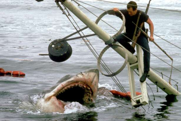 """Roy Scheider in a scene from """"Jaws,"""" which is being screened at the Avon Theatre in Stamford July 3."""