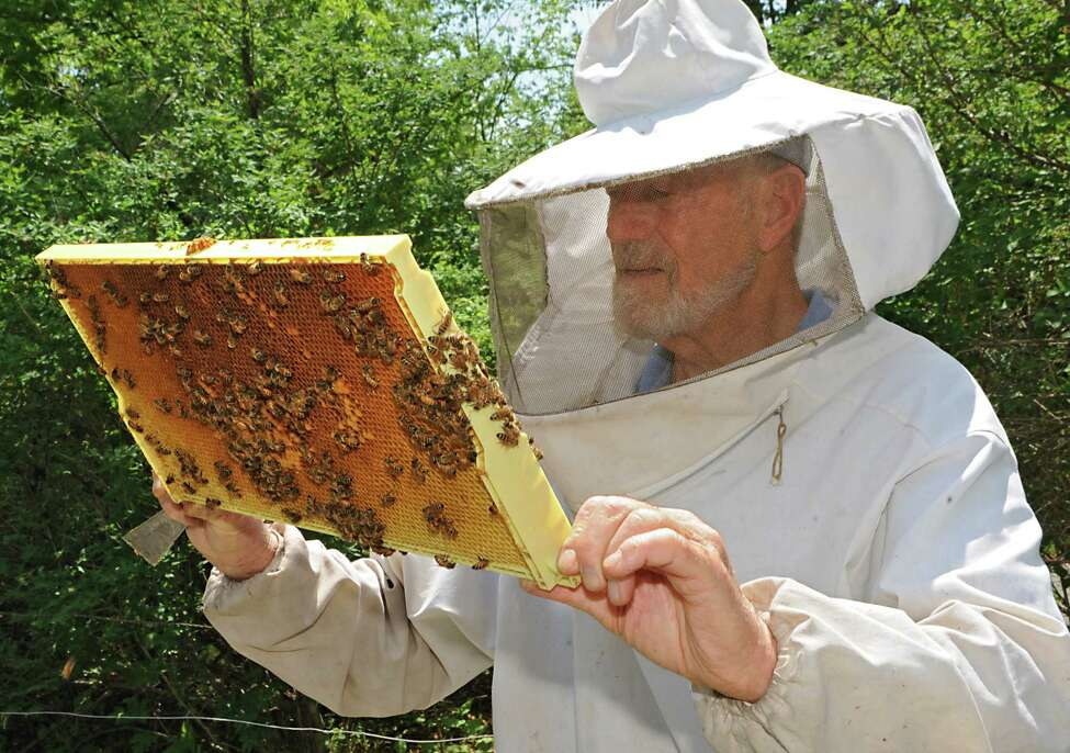 Beekeeper Stephen Wilson checks the bees on a frame in one of his beehives in his back yard on Thursday, May 28, 2015 in Altamont, N.Y. (Lori Van Buren / Times Union)