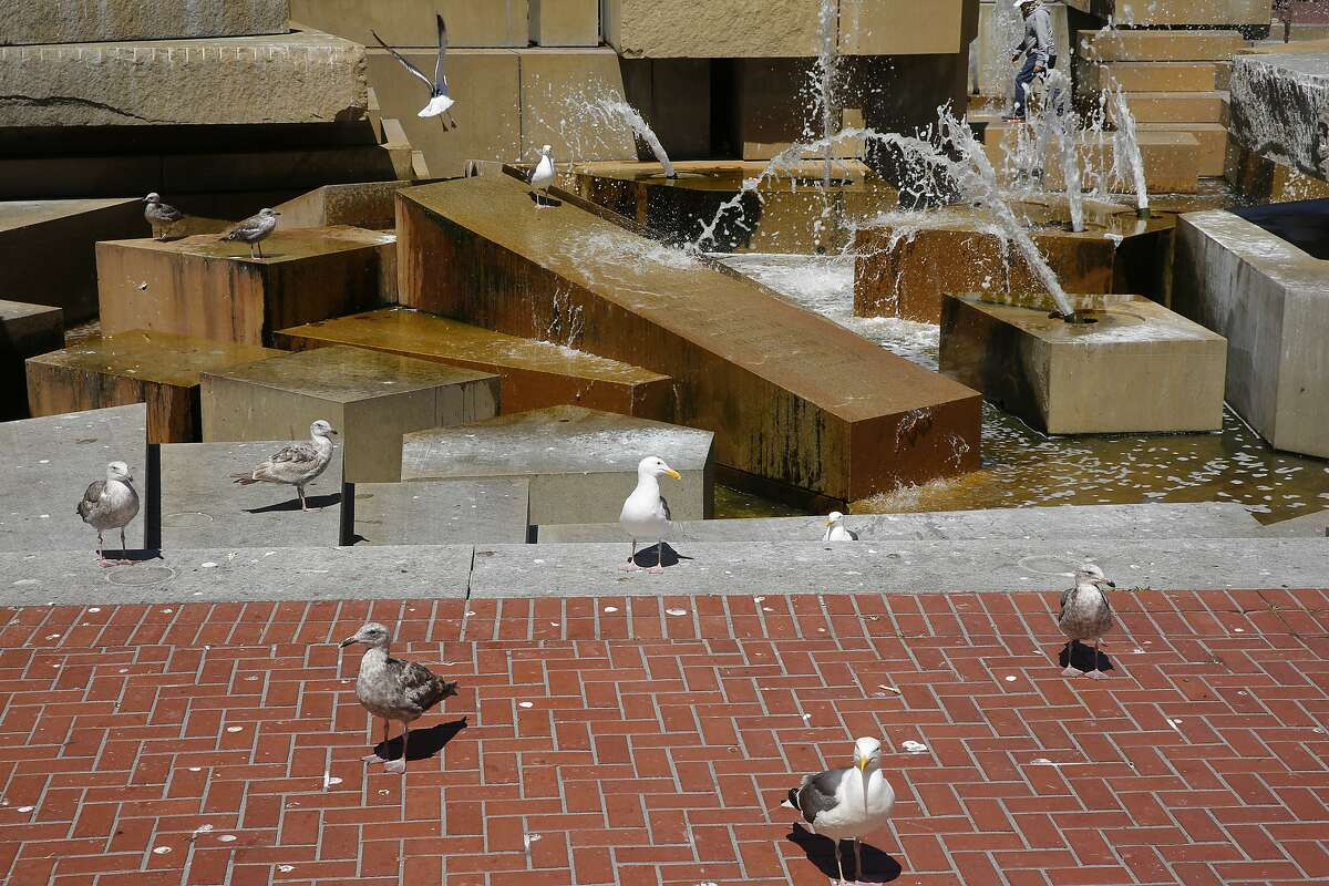 The spraying fountain at the United Nations Plaza, Wednesday, June 20, 2018, in San Francisco, Calif.