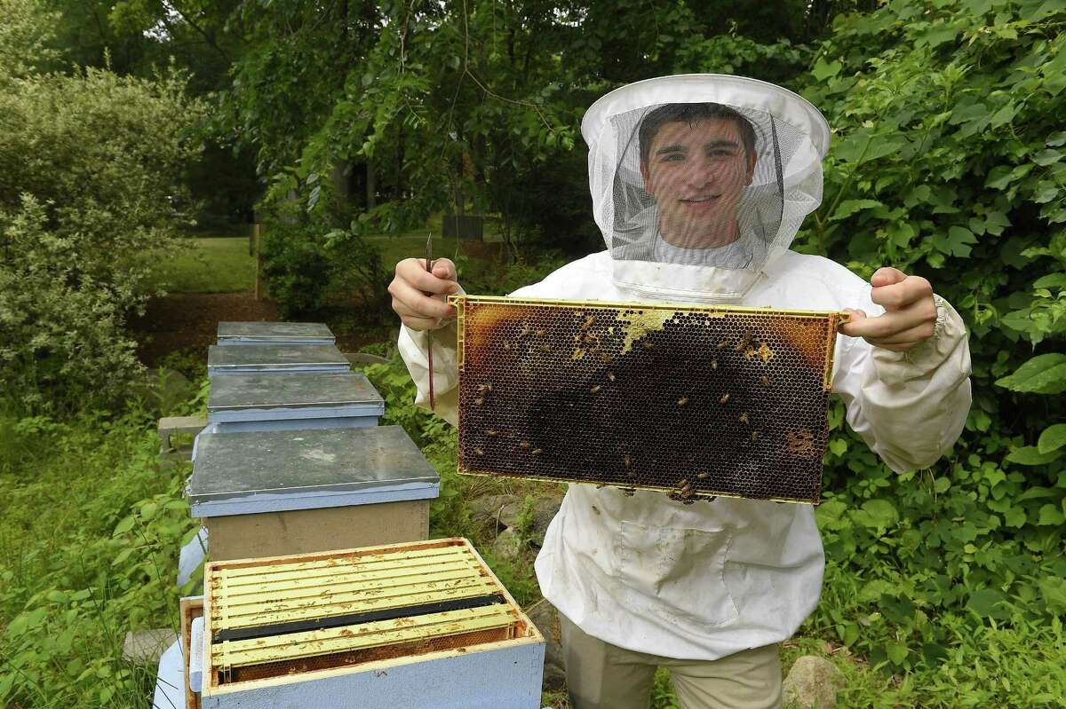 AITE graduate Dylan Martin, an avid beekeeper, checks one of his honey producing hives on June 22, 2018 at his home in Stamford, Connecticut.