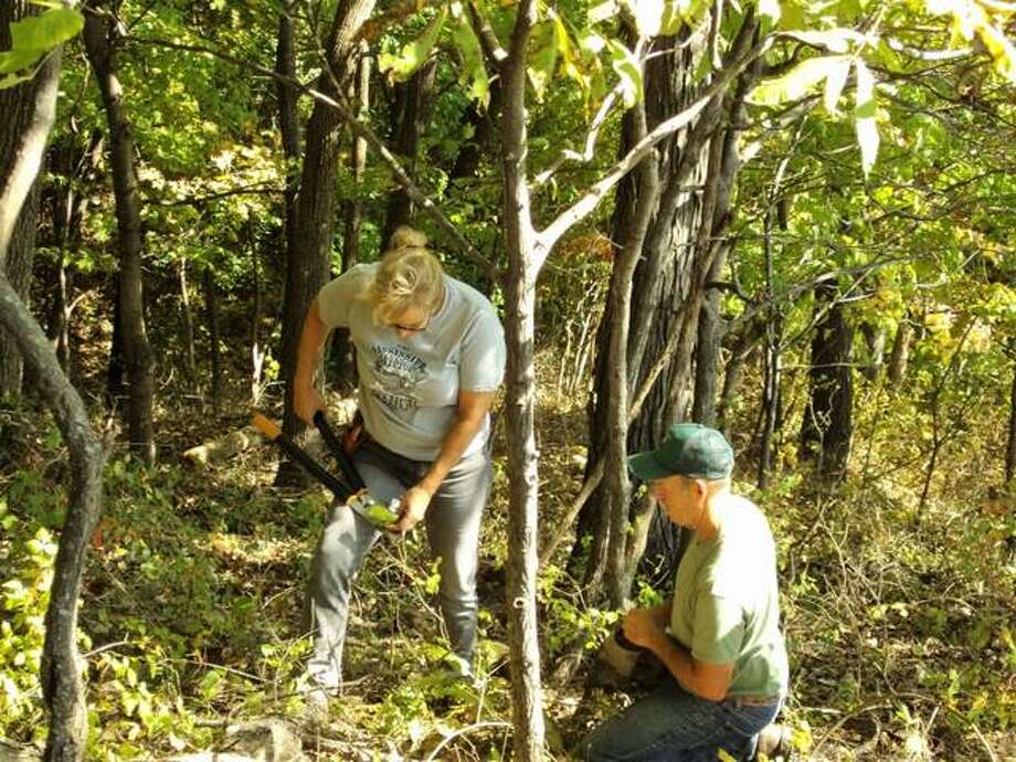 Virginia Woulfe-Beile, left, and Mark Phipps work to clean up the Missionary Oblates Woods Nature Preserve during a work day in October 2016. Photo:       For The Telegraph