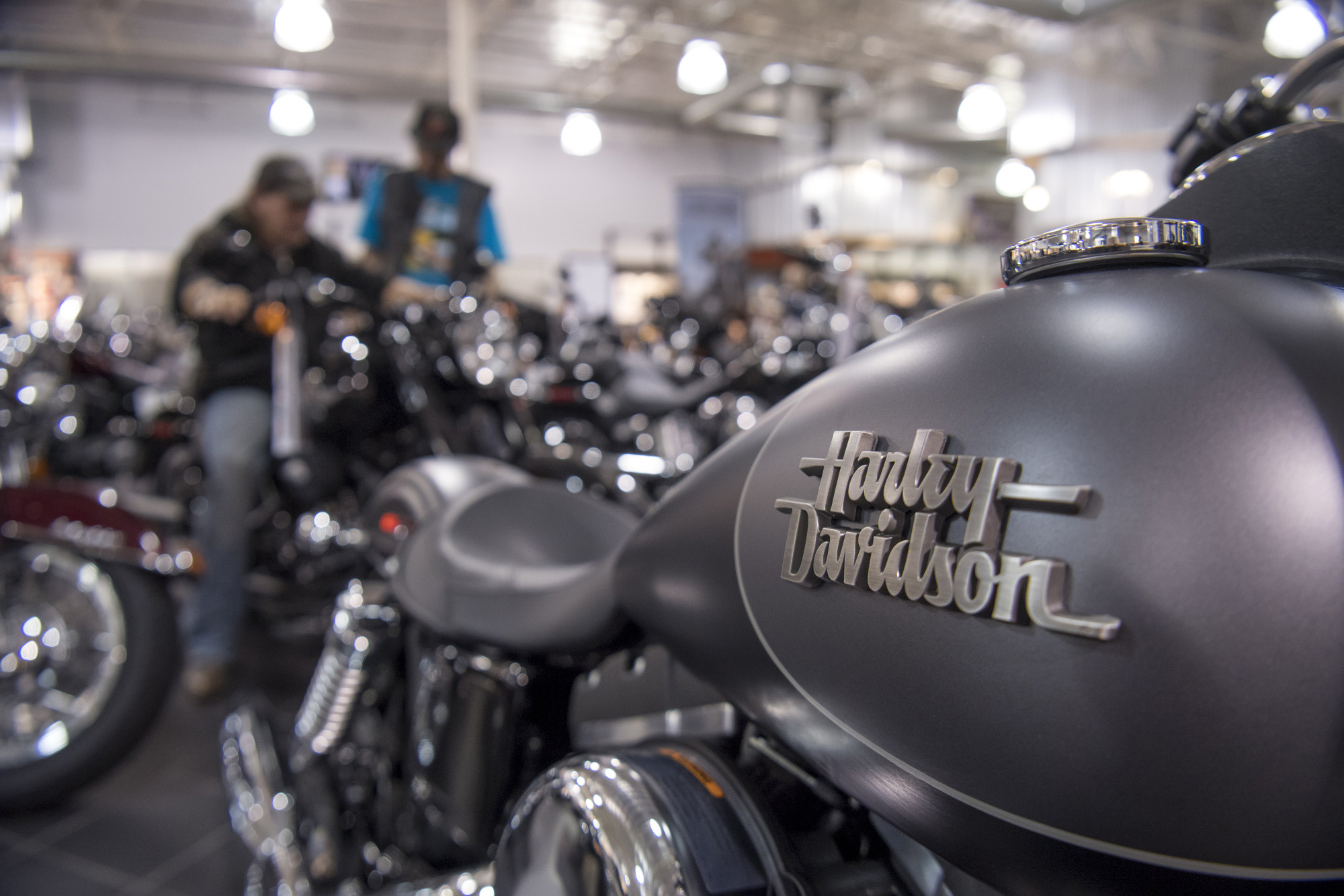 Harley davidson fuck the factory shift gone wild