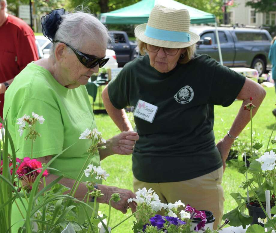 Sandy Gammons, right, a member of the Garden Club of New Milford, talks with customer Peggy King about petunias and geraniums at the club's annual plant sale recently held on the Village Green. Photo: Deborah Rose / Hearst Connecticut Media / The News-Times  / Spectrum
