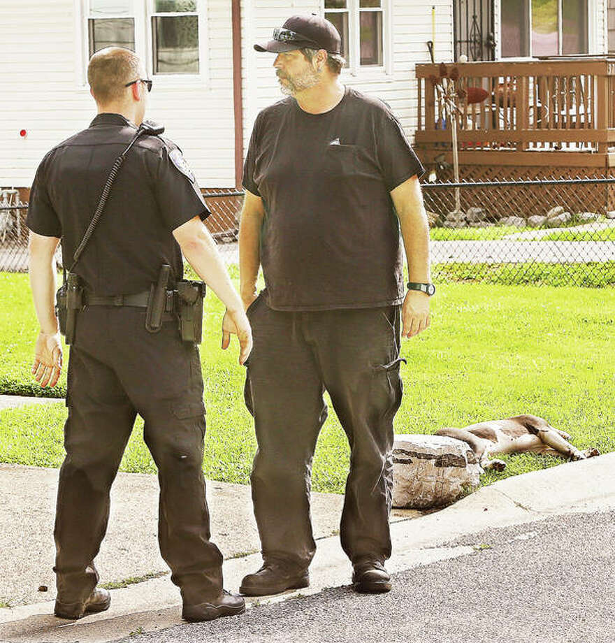 Alton Animal Control Officer Steve Bosaw, right, talks with an Alton Police officer Wednesday in the 3700 block of Horn Ave. in Alton after an officer was forced to shoot and kill an aggressive pit bull, background. Photo:     John Badman | The Telegraph
